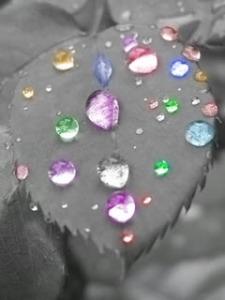 Water_Drop Pink rain